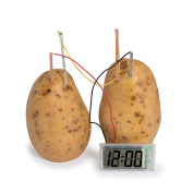 Funtime Gifts Potato Clock