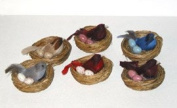 Florence the 6.4cm feathered Bird in nest with eggs, 6 styles