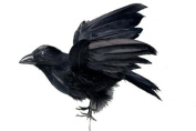 1 Pc Ralph the Artificial Crow 19cm