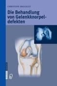 Die Behandlung Von Gelenkknorpeldefekten [GER]