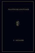 Plastische Anatomie [GER]