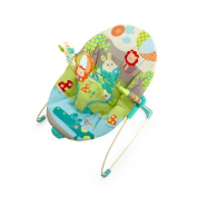 Bright Starts Bouncer, Up Up & Away