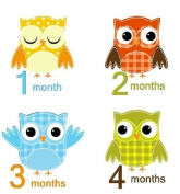 Monthly Stickers Baby Month Stickers Baby Boy Monthly Stickers Boy Baby Monthly Stickers Boy Patchwork Owls Monthly Stickers Argyle Plaid Dots