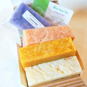 All Natural / Organic Handmade Soap Gift Set - Aloe Calendula, Orange Hibiscus w/ Aloe, Ginger Lime w/ Aloe