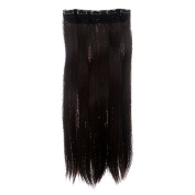 Hot Women Long Straight Onepiece Clip on Hair Extensions Hairpiece 6 Colours PP18