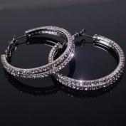 2014 New rhinestone circle hoop earrings black metal plated with clear stones
