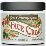 Face Cream - Daily Moisturiser and Anti Ageing Cream Skin Care - 60ml. NO Parabens, Artificial Colour or Fragrance - Natural Ingredients include Hyaluronic Acid, Aloe, Coconut Oil, Jojoba Oil, Vitamin E plus more Anti Ageing and ..