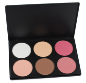 Frola Cosmetics YF-06I Professional 6 Colours Face Power Foundation Blush Blusher Makeup Palette