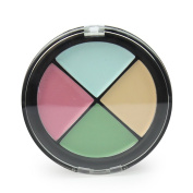 Pro 4 Colours Women Cosmetic Makeup Concealer Palette Shading Skin Camouflage
