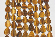 "Genuine Stone Beads - 15x20mm Carved Leaf - High Quality Beads - 15-16"" Long Strands - About 18-20 Beads Per Strand"