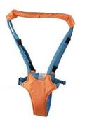 Baby walking assistant walk helper-To help the promotion of your baby's bone!-basket orange