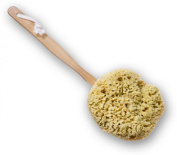 SeaSationals™ Natural Wool Sea Sponge Bath & Shower Brush