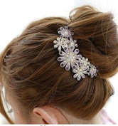 Accmart(TM) Charming Crystal Rhinestone Purple Flower Pattern Design Hair Comb Pin for Bridal Wedding Party