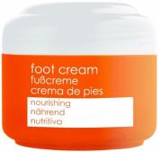 FOOT CREAM NOURISHING 50ml 1.7 fl oz, ZIAJA, olive oil, Dry and normal skin