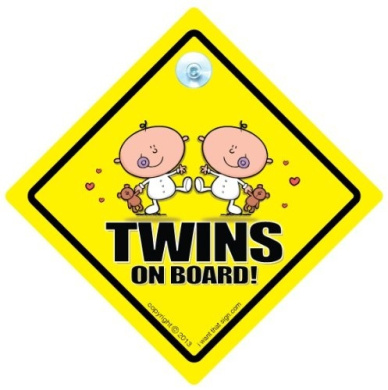 Twins On Board Car Sign Uk