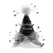 Birthday Princess Party Hat