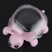 Click Down Mini Solar Powered Energy Educational Toy Cute Turtle Tortoise Gadget Gift