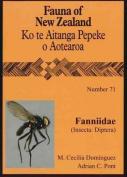 Fanniidae Insecta Diptera
