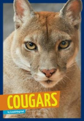 Cougars (Wild Cats)