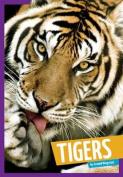 Tigers (Wild Cats)