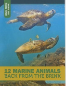 12 Marine Animals Back from the Brink