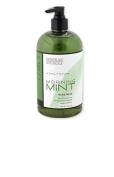 Archipelago Botanicals Morning Mint Hand Wash 17 fl oz / 503 ml