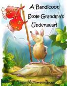 A Bandicoot Stole Grandma's Underwear!
