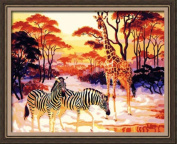 Paint By Number 41cm X 50cm Kit (Framed) Beauty Selva