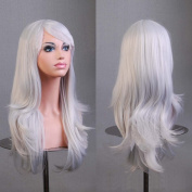 HILISS 70cm Long Heat Resistant Silver White Big Wavy Cosplay Wig
