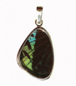 Green-Banded Leilus Butterfly Wing-Shaped Small Pendant