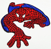 Patch Iron On Picture Applique Spider Man