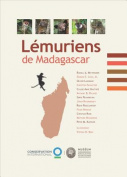 Lemuriens de Madagascar [FRE]