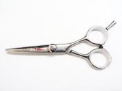 Koi Evolution 13cm Professional Hairdressing Scissors