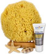 SeaSationals#8482; Natural Yellow Sea Sponge Bath Kit, 18cm