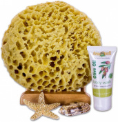 SeaSationals™ Natural Wool Sea Sponge Bath Kit, 18cm