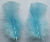 Light Blue Turkey Plumage Craft Feathers - Mini Pkg