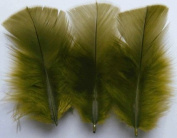 Olive Turkey Plumage Craft Feathers - Mini Pkg