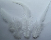 White Rooster Saddle Craft Feathers - Mini Pkg