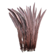 25pcs 41cm - 46cm Bleach-Dyed Rooster Coque Tail Feathers, 15+ Colours to Pick Up