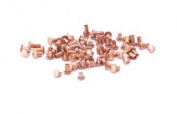 Assorted Copper Rivets