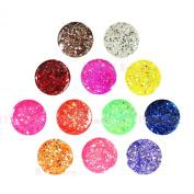 Professional 12 Pcs Mix Colour Glitter Hexagon Sheet Colourful UV Gel Builder Nail Art Beauty Polish Salon Kit Set False Tips Acrylic Nail Salon Beauty Shop