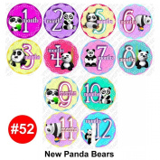 NEW PANDAS Baby Month Onesie Stickers Baby Shower Gift Photo Shower Stickers, baby shower gift by OnesieStickers