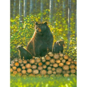 Bears - Log Pile Chris Hiett Small Wall Sign Gifts, and, Cards Wedding, Gift, Idea Occasion, Gift, Idea