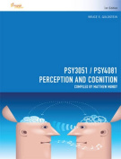 CP1008 - PSY3051/ PSY4081 Perception and Cognition