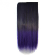 Colorlife Fashionable 60cm Black to Dark Purple Ombre Dip-dye Straight Full Head Clip in Hair Extensions Wig with Exclusive Gift