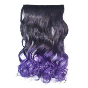 Colorlife Fashionable 60cm Black to Dark Purple Ombre Curly Full Thick Head Clip in Hair Extensions with Exclusive Photo Frame