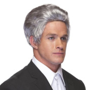 High Quality Grey Salesman Synthetic Hair Wig