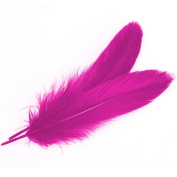 Sealike 50 pcs 10-15cm Real Natural Home Decor Goose Feather Great Party Wedding Decorations with a Stylus