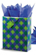 Lucky You! Super Jumbo Gift bag - Blue/Green