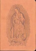 Sagrada Biblia Guadalupana 0570 [Spanish]